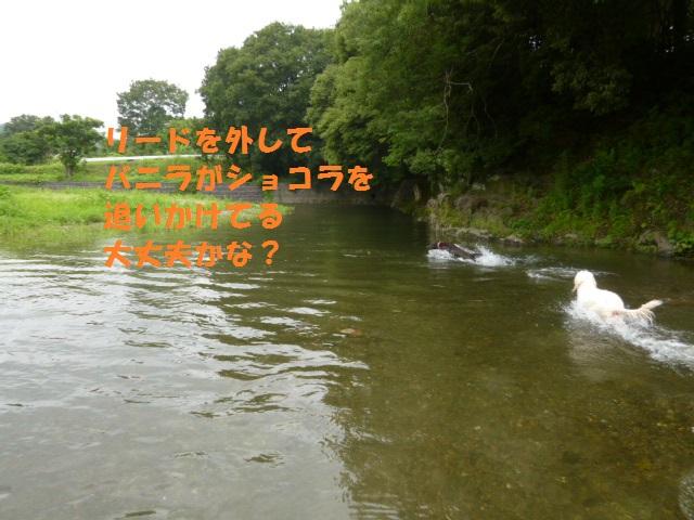 川遊び 035