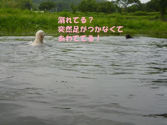 川遊び 120