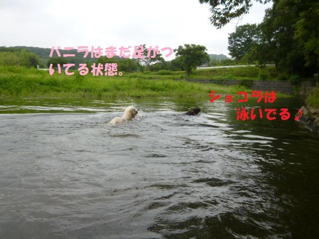 川遊び 124