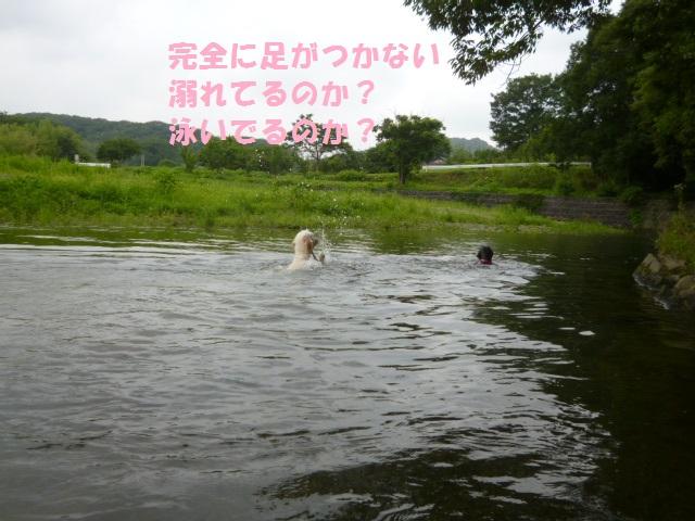 川遊び 125