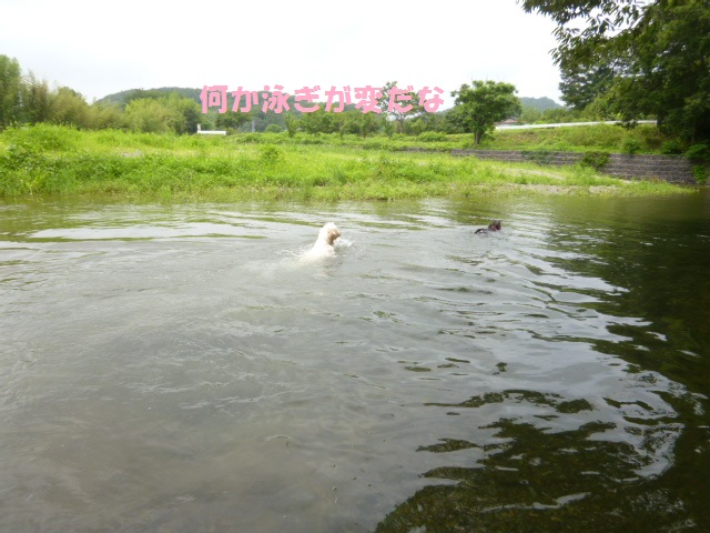 川遊び 150