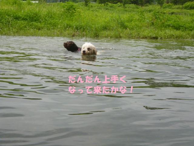 川遊び 153