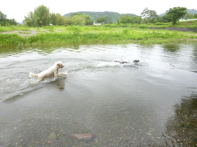川遊び 040