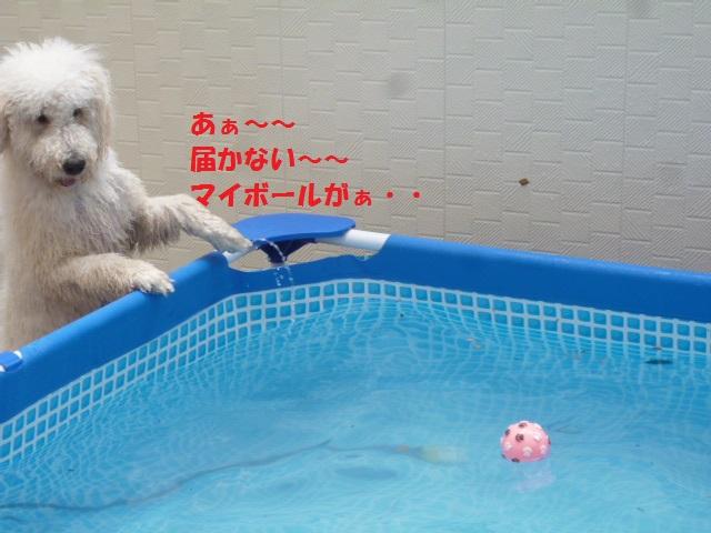 新丸子オフ会 073