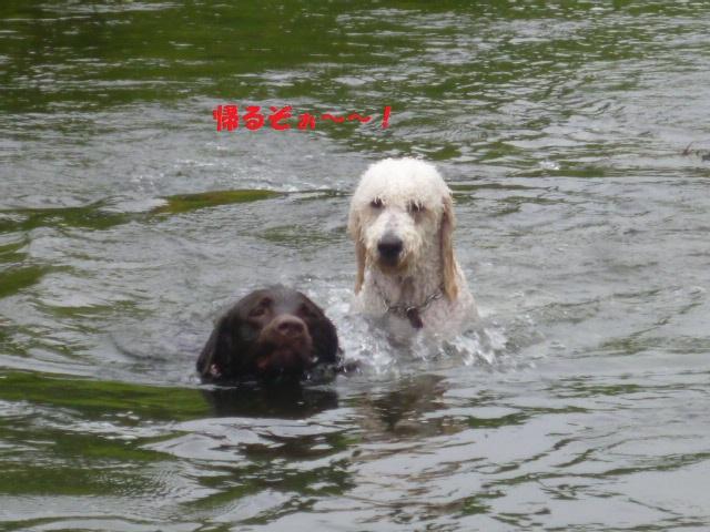 気になる~川遊び 214
