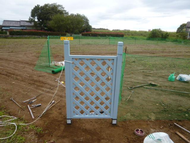 フェンス塗装 044