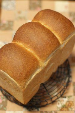 パン屋さんの食パン(全粒粉入り)