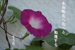 nagatatyou