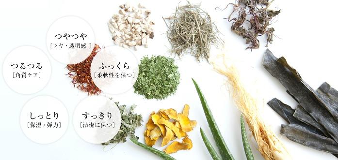 植物・天然素材たち