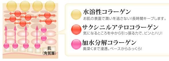 3つのコラーゲン