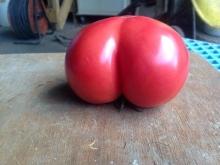お尻トマト
