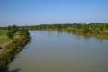 橋から見た荒川