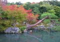 曹源池と庭園