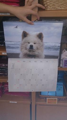 わさおカレンダー11月