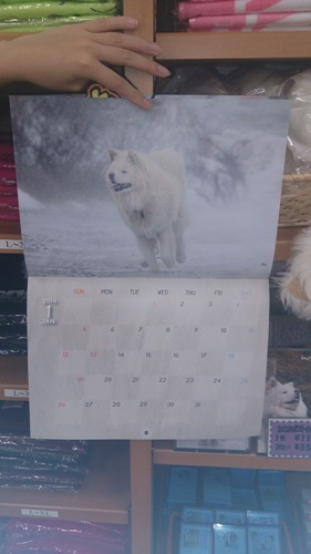 わさおカレンダー1月
