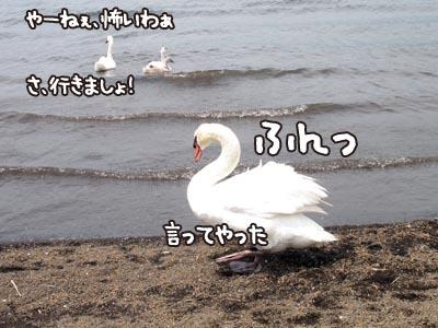 IMG_7197.jpg