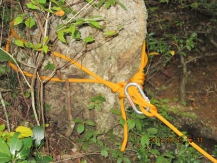 20131030-3 大木の幹に碇結び(カラビナ使用)