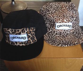 ochard豹
