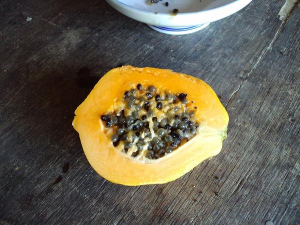 papaya130726_2.jpg