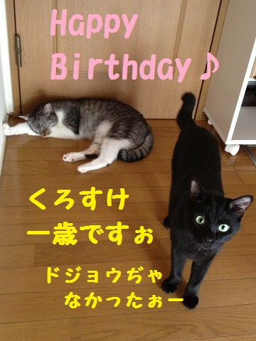 HappyKUROSUKE.jpg