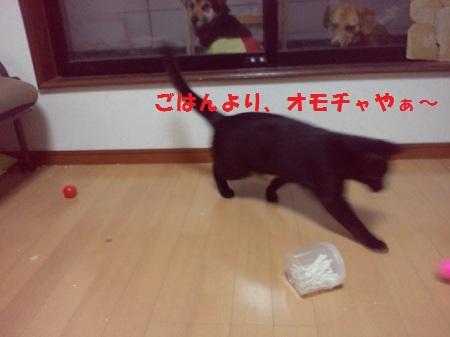 2013040719490001.jpg