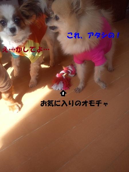 2013050615290003.jpg