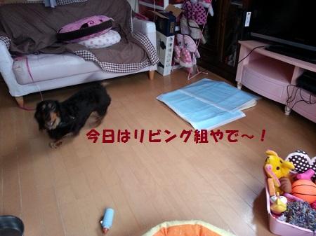 CA75RY01.jpg