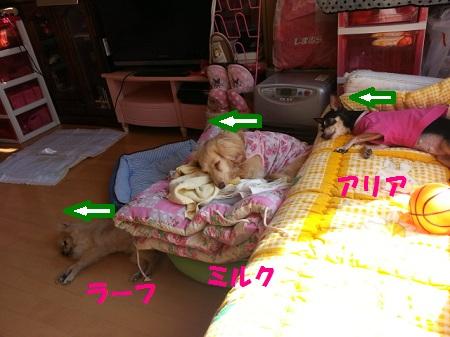 CAA517JW.jpg