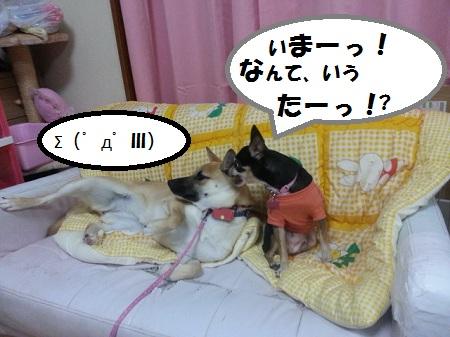 CACHYJ8I.jpg