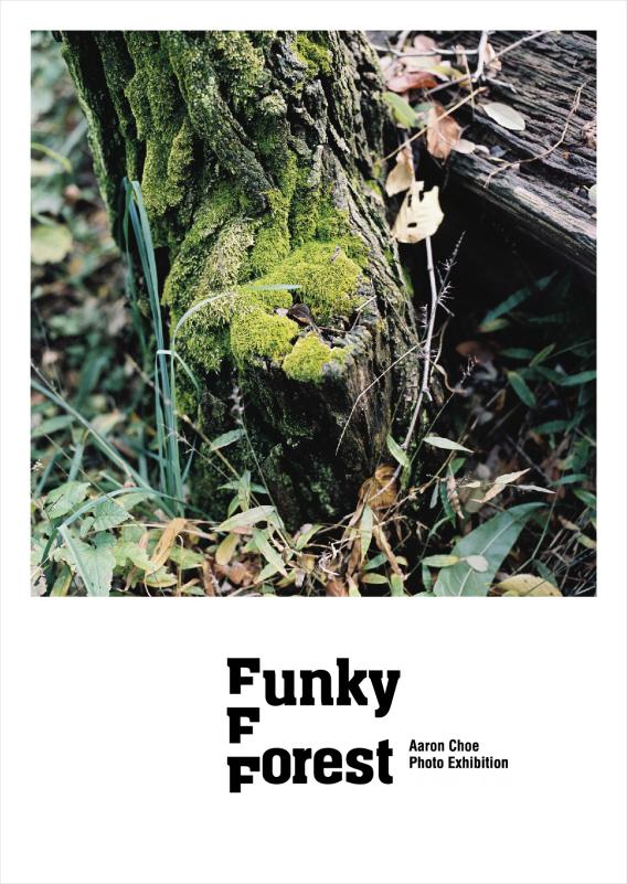 FunkyForest.jpg