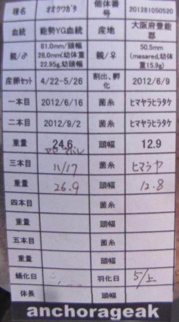 201281050520cards.jpg
