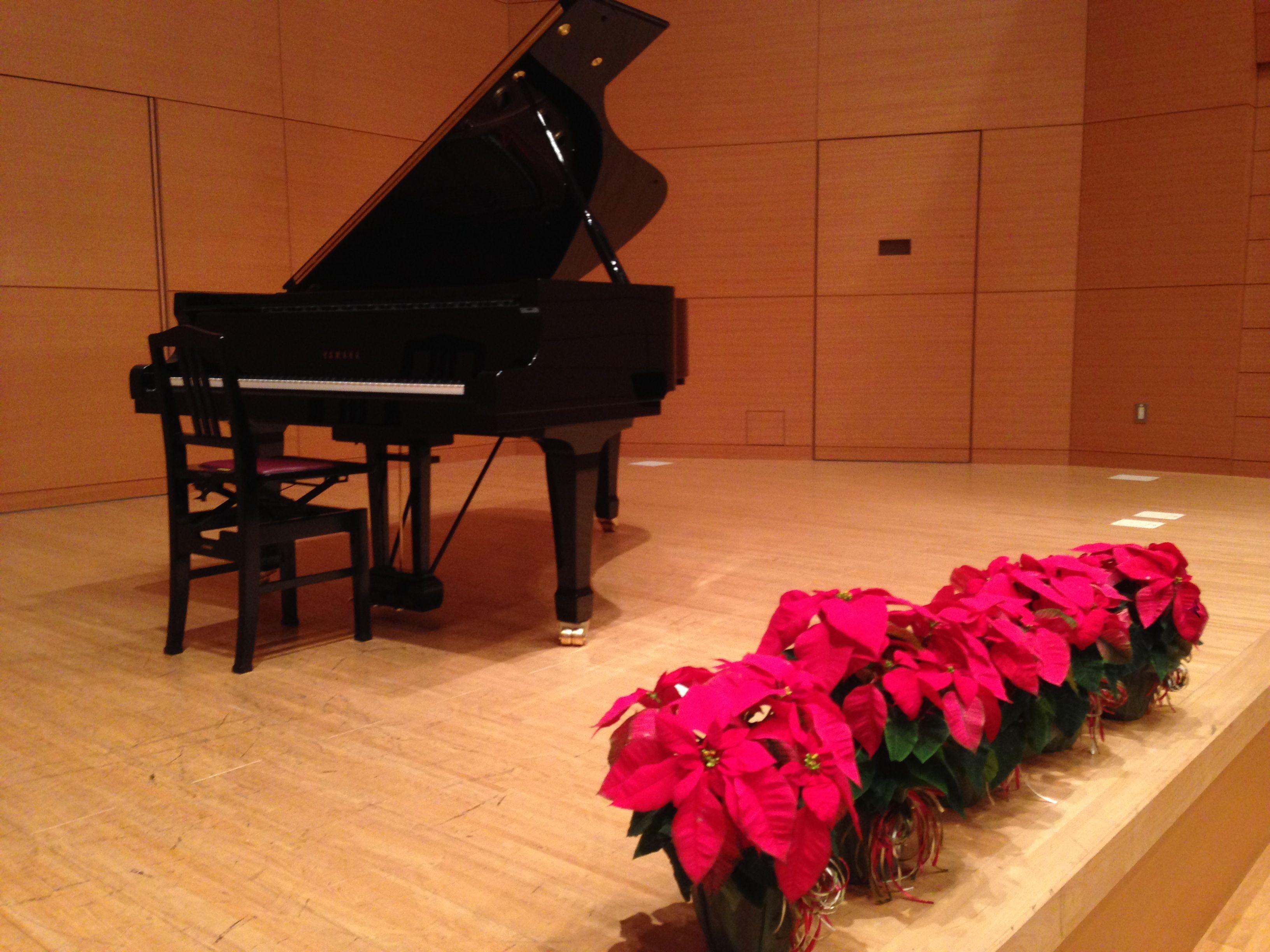 IMG_1420ピアノポインセチア
