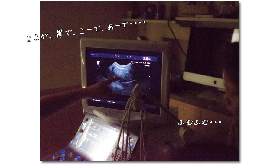 DSC_0771_LRm1