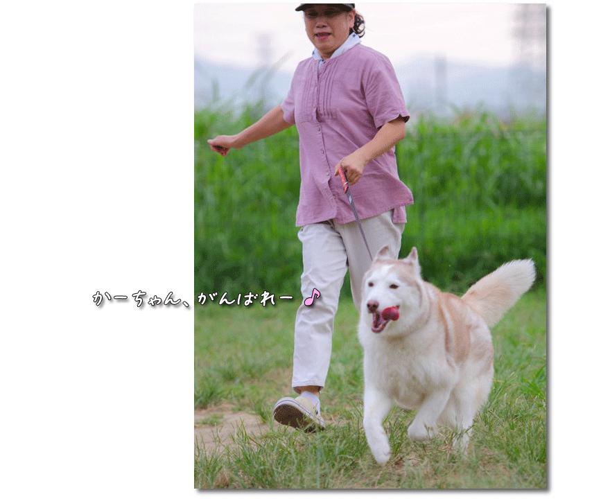 DSC_9940_LRm3.png