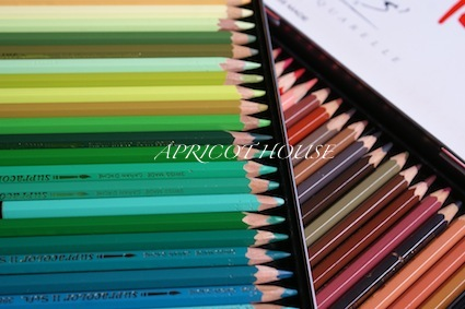 13-5-17色鉛筆