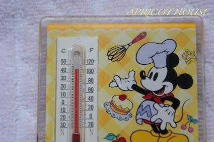 130811温度計