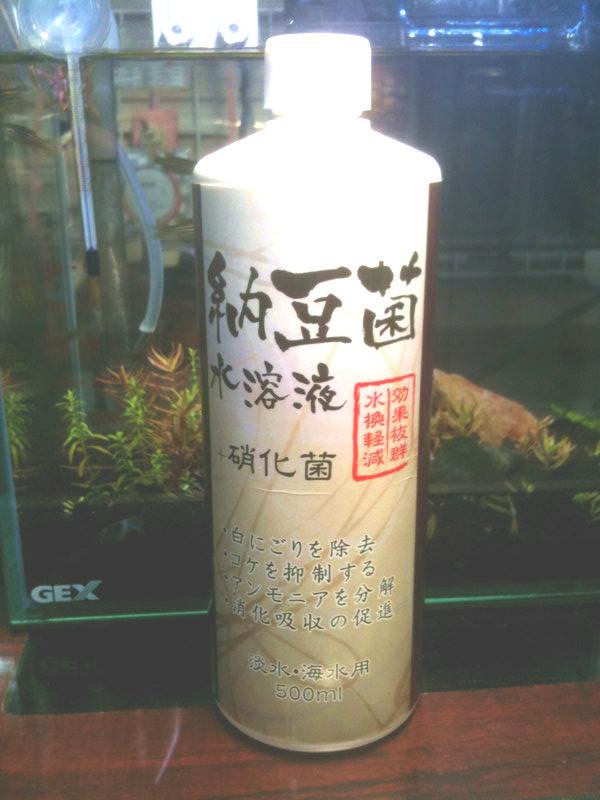 納豆菌水溶液