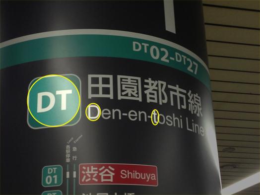 DT.jpg