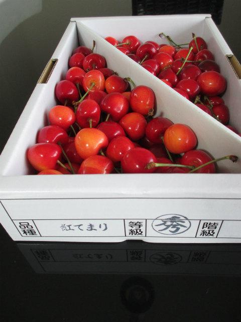 20130708 寒河江市板橋農園 紅てまり
