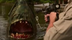 SWAMP SHARK111