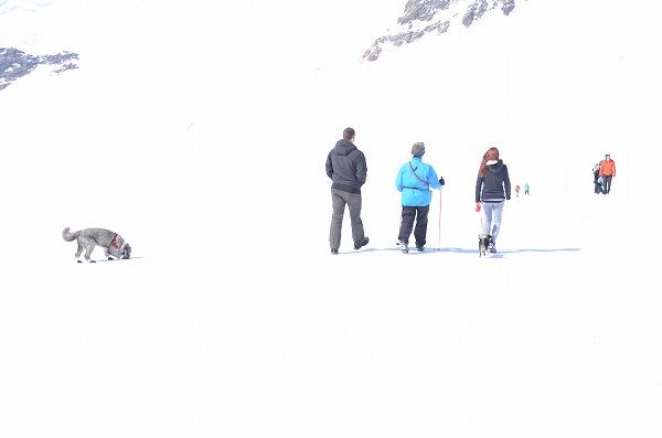 スイス旅行4日目 (142)