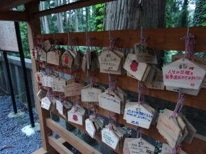 20130818 八幡神社05