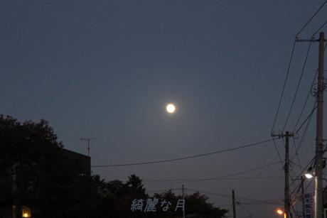 きれいな月