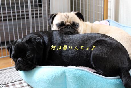 果りんちょ♪枕