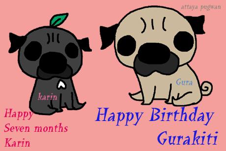 グラ誕生日と果りん。祝7か月
