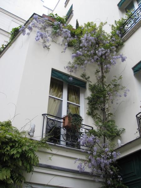 家を飾る花
