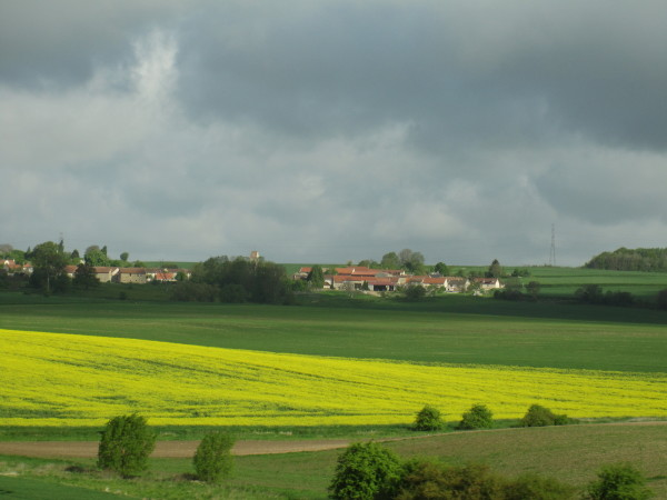 バスからの田園風景