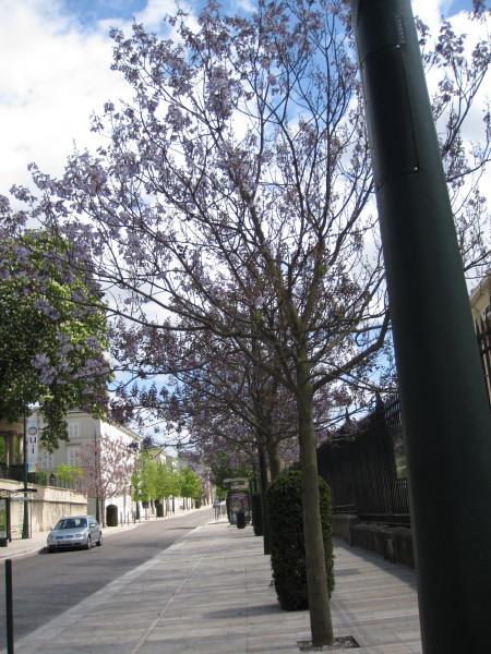 エペルネの街並