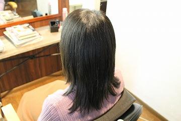 スピエラ矯正 A L&M hair
