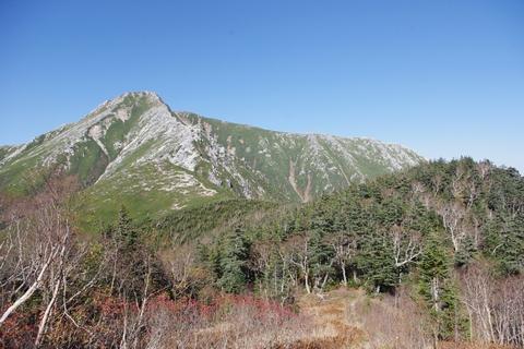 樹林帯から常念岳を望む